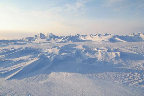Экспедиция на Северный полюс (21 фото)